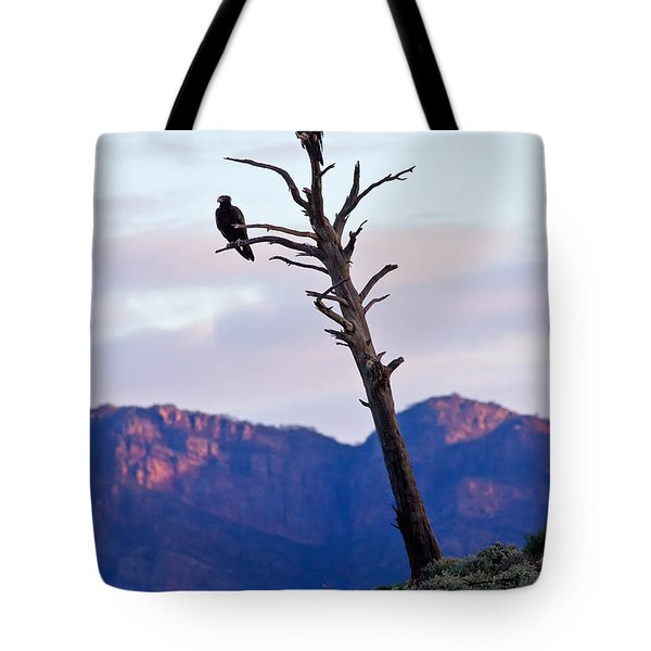 Wedge Tail Eagles Tote Bag by Bill  Robinson