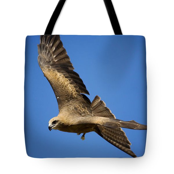 Wedgetail Eagle Flight Tote Bag by Mike  Dawson