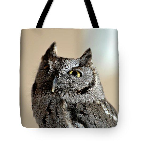 Wee Western Screech Owl Tote Bag