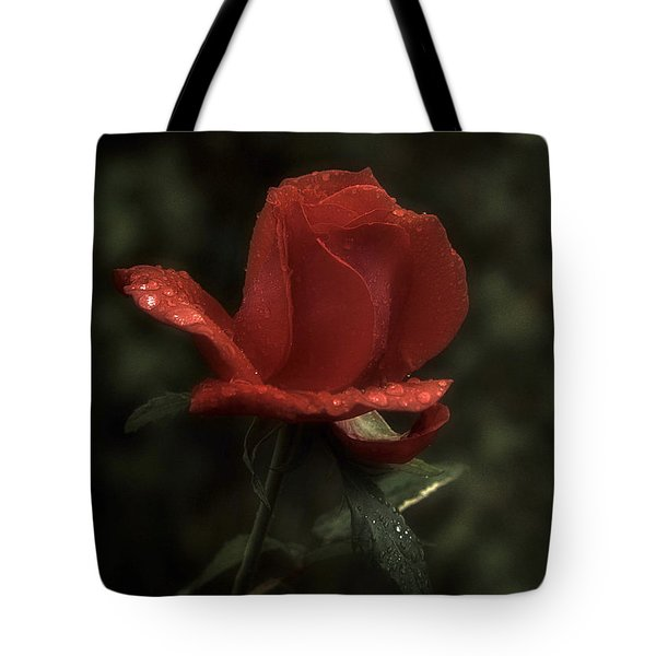 Weeping Red Rose Tote Bag