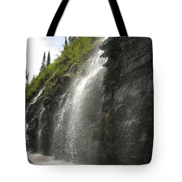 Weeping Wall Tote Bag by Diane Greco-Lesser