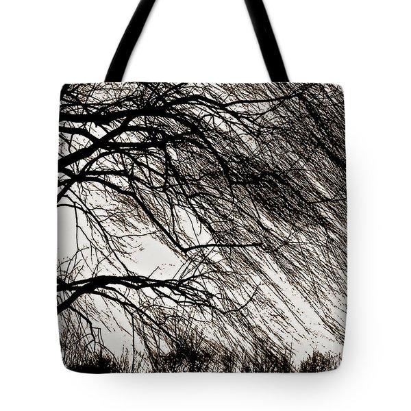 Weeping Willow Tree  Tote Bag by Carol F Austin