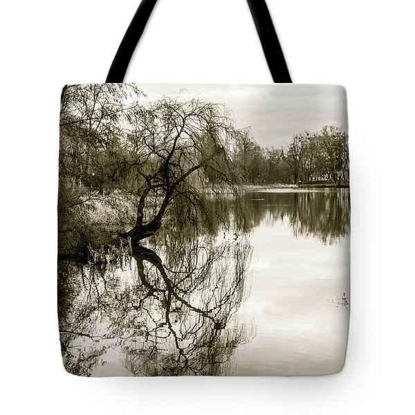 Weeping Willow Tree In The Winter Tote Bag