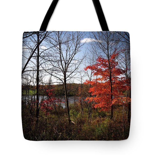 Tote Bag featuring the photograph Wehr Wonders by Kimberly Mackowski