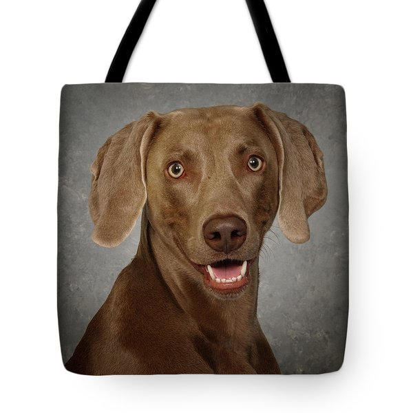 Tote Bag featuring the photograph Weimaraner by Greg Mimbs