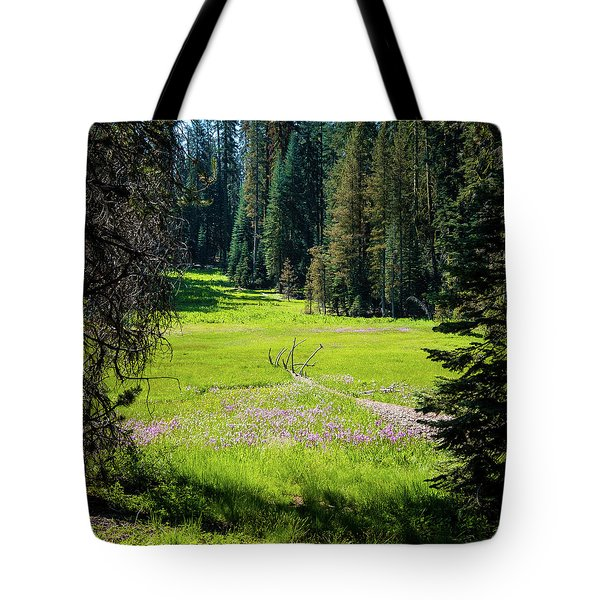 Tote Bag featuring the photograph Welcom To Life- by JD Mims