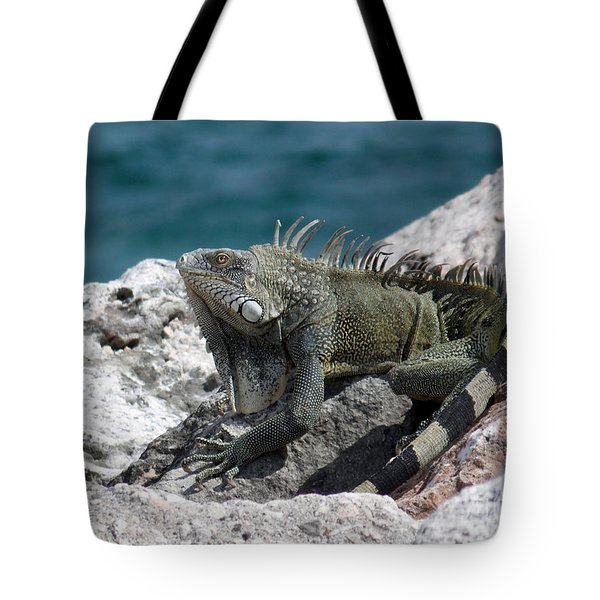 Welcome To Curacao Tote Bag