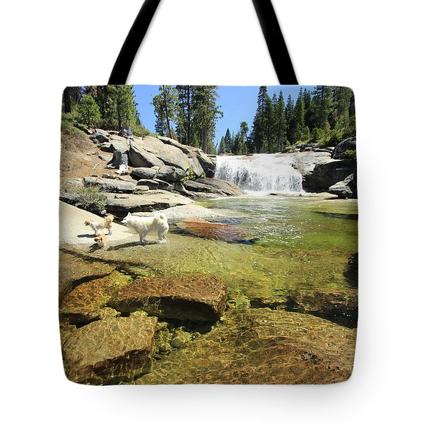 Tote Bag featuring the photograph Welcome To Dog's Dreams by Sean Sarsfield