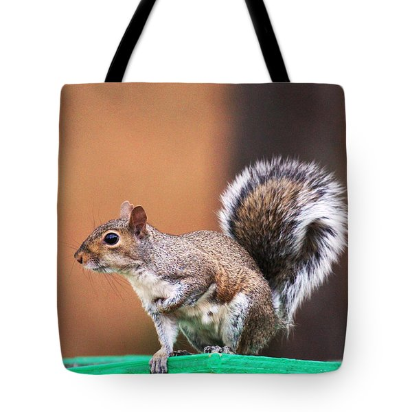 Well Fed Tote Bag