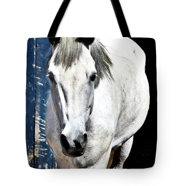 Well, Hello There Tote Bag