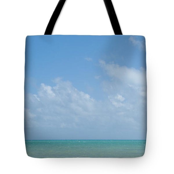 Tote Bag featuring the photograph We'll Wait For Summer by Yvette Van Teeffelen