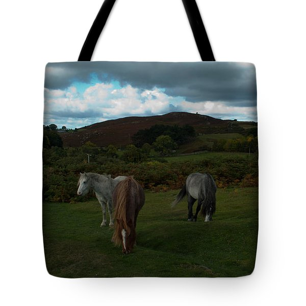 Tote Bag featuring the photograph Welsh Mountain Pony's  by Lynn Hughes