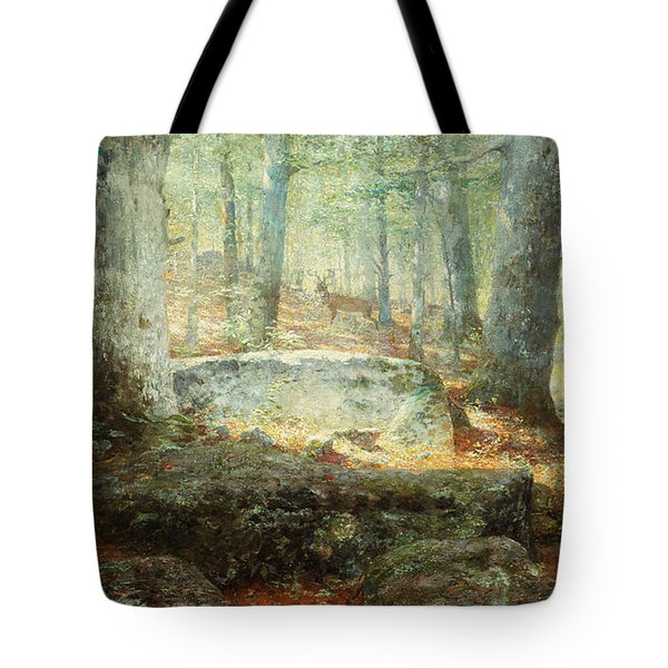 West Virginia Forest, 1905 Tote Bag