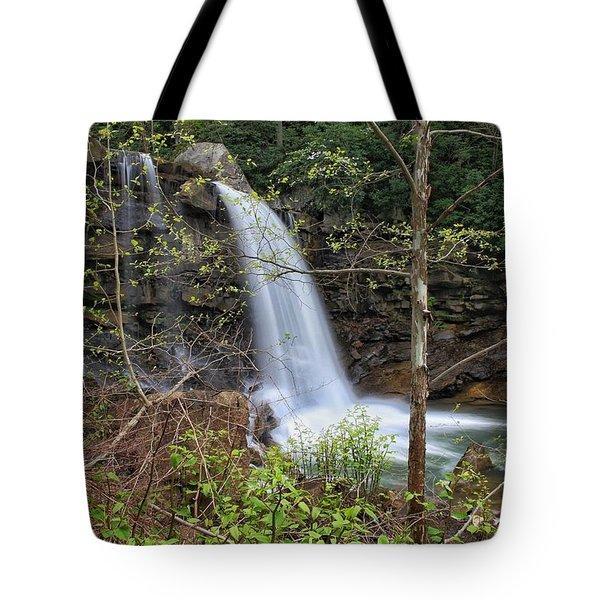 West Virginia Highway 16 Treat Tote Bag