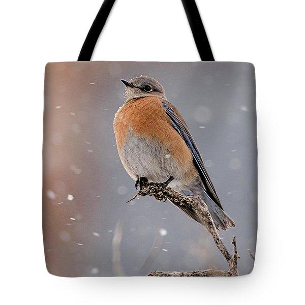 Western Bluebird In Winter Tote Bag