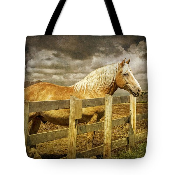 Western Horse In Alberta Canada Tote Bag by Randall Nyhof