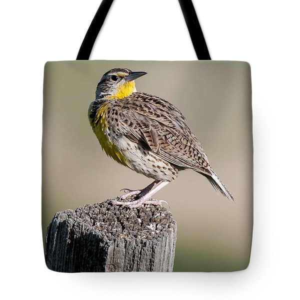 Tote Bag featuring the photograph Western Meadowlark by Gary Lengyel