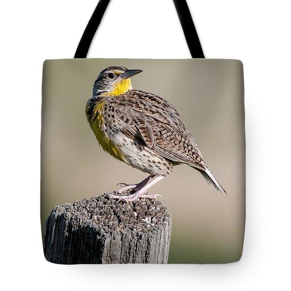 Western Meadowlark Tote Bag