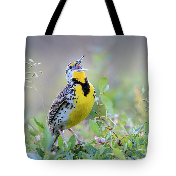 Western Meadowlark Tote Bag by Jack Bell