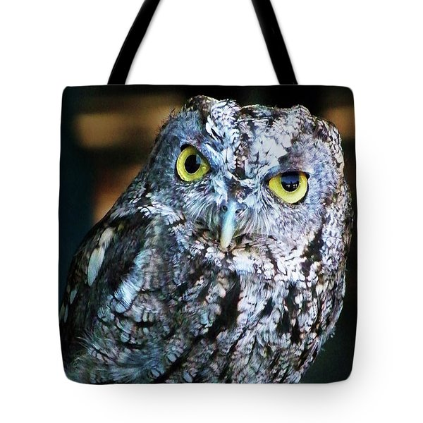 Tote Bag featuring the photograph Western Screech Owl by Anthony Jones