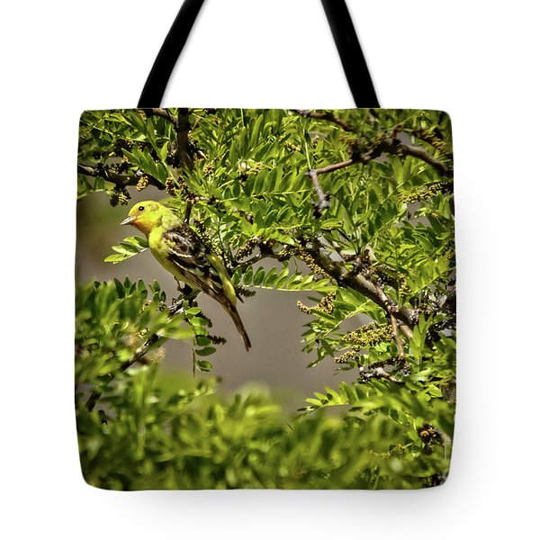 Western Tanager Tote Bag by Robert Bales
