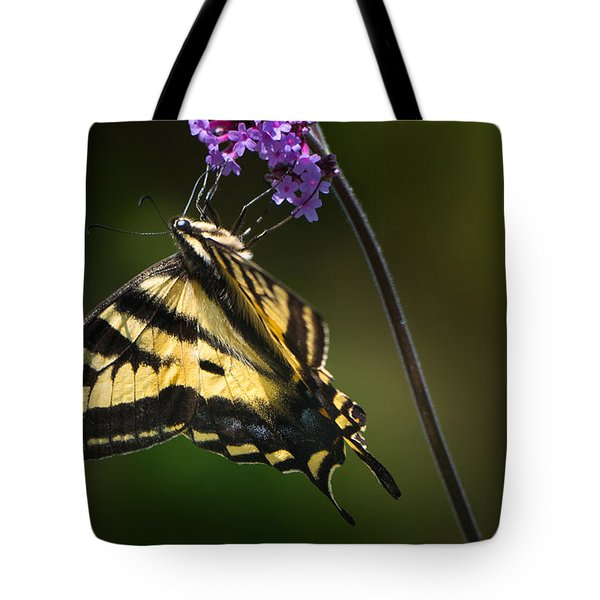 Western Tiger Swallowtail Butterfly On Purble Verbena Tote Bag