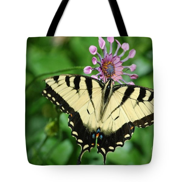 Tote Bag featuring the photograph Western Tiger Swallowtail by Frank Stallone