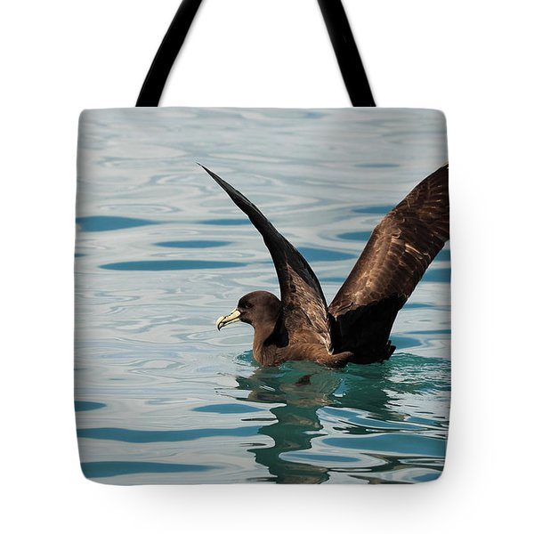 Tote Bag featuring the photograph Westland Petrel Raising Wings by Max Allen