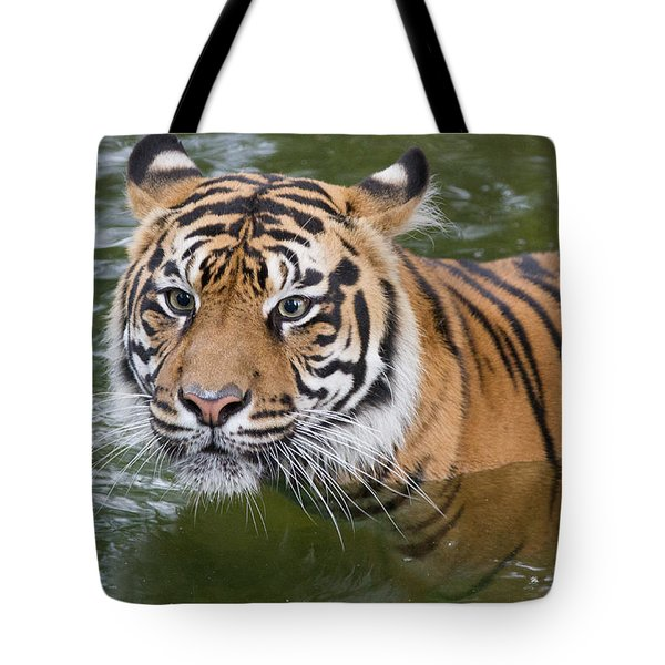 Wet And Wild 2 Tote Bag by Chris Scroggins
