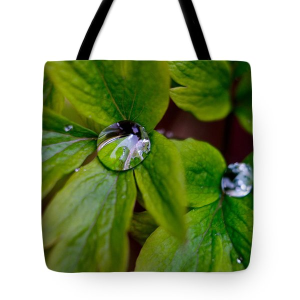 Wet Bleeding Heart Leaves Tote Bag