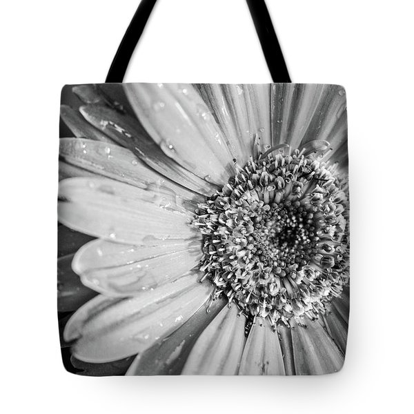 Tote Bag featuring the photograph Wet Daisy In Monochrome by SR Green