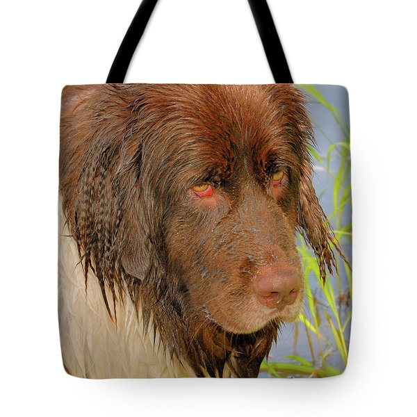 Tote Bag featuring the photograph Wet Newfie by Debbie Stahre