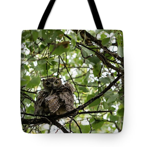 Wet Owl - Wide View Tote Bag
