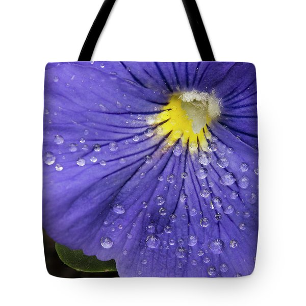 Tote Bag featuring the photograph Wet Pansy by Jean Noren