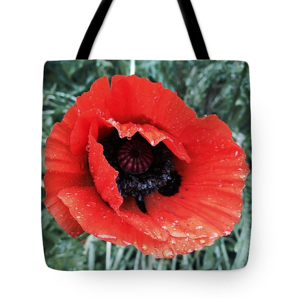 Wet Poppy Tote Bag