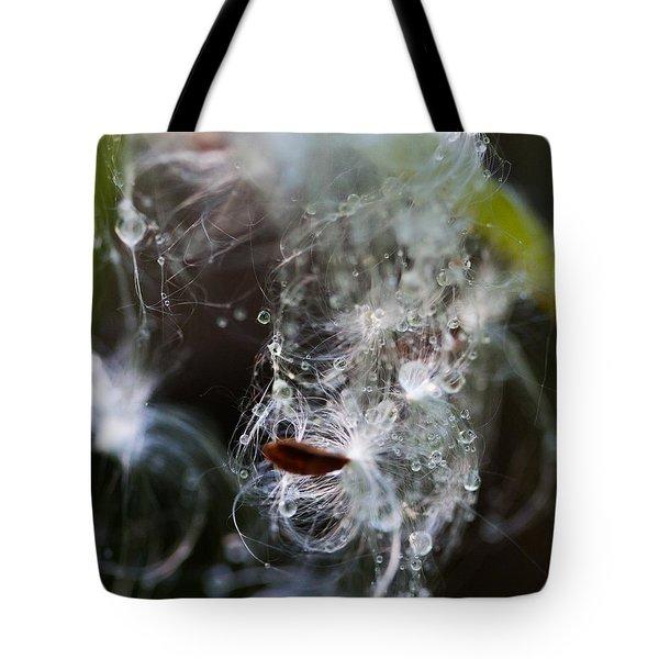 Wet Seed Tote Bag