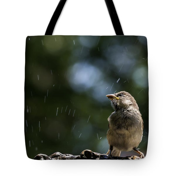 Wet Sparrow Tote Bag