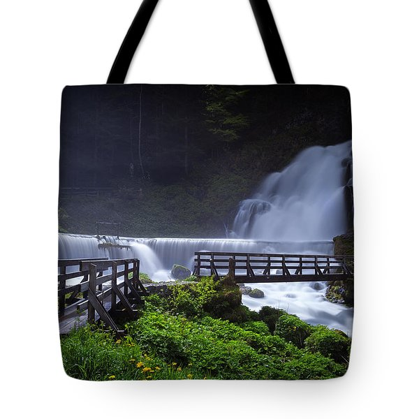 Wet Walk Tote Bag by Dominique Dubied