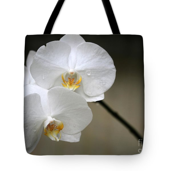 Tote Bag featuring the photograph Wet White Orchids by Sabrina L Ryan