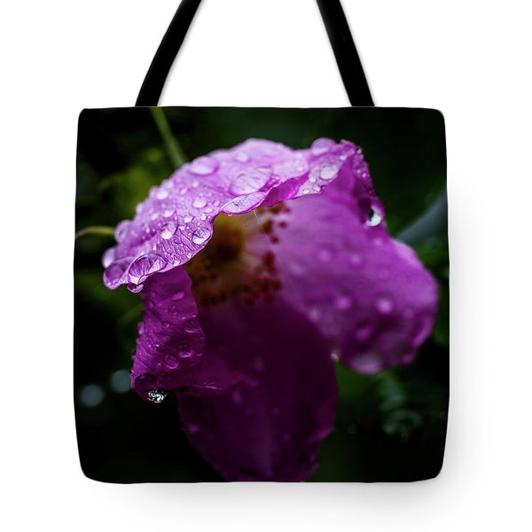 Tote Bag featuring the photograph Wet Wild Rose by Darcy Michaelchuk