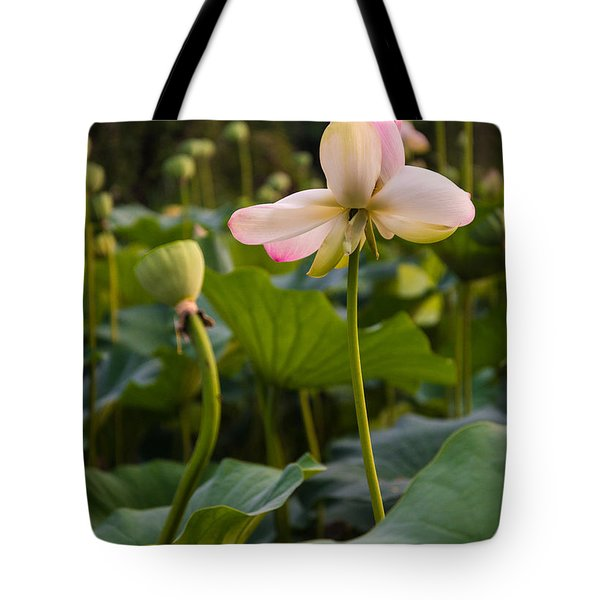 Wetland Flowers Tote Bag
