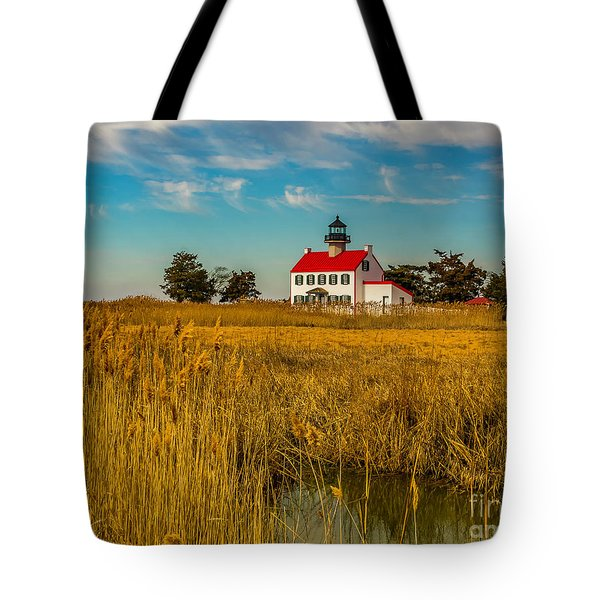 Tote Bag featuring the photograph Wetlands At East Point Light by Nick Zelinsky