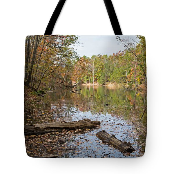 Wetlands In Autumn Tote Bag by Kevin McCarthy