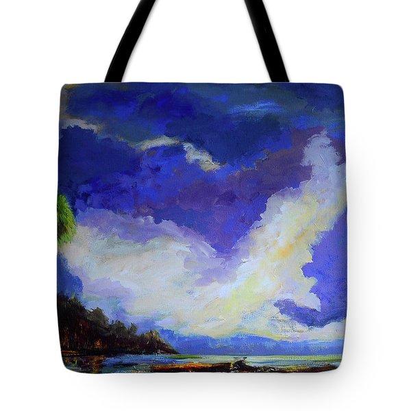 Wetlands Sky  Tote Bag