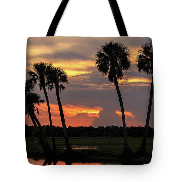 Wetlands Sunset Tote Bag