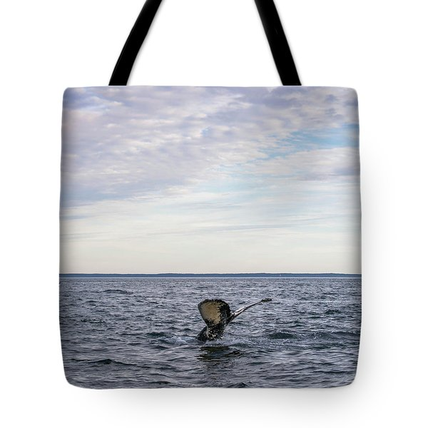 Whale Watching In Canada Tote Bag