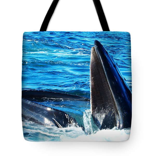 Whale's Opening Mouth Tote Bag by Paul Ge