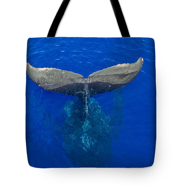 Whaletail Tote Bag