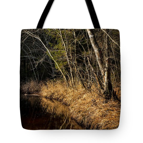 Wharton Forest Fall Tote Bag