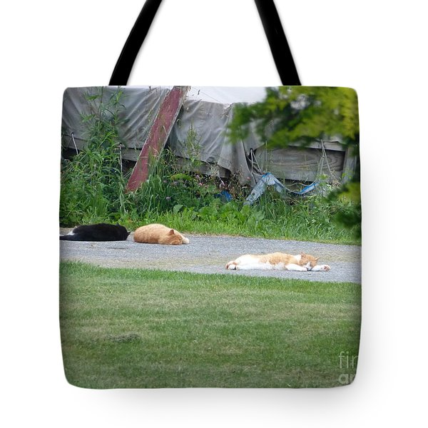 What A Day Tote Bag by Donald C Morgan